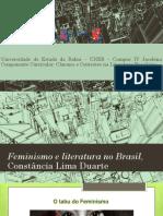Apresentação Feminismo e Literatura No Brasil