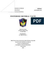 posterior urethral valve