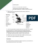 BIOLOGIA CELULAR CUESTIONARIO , PRACTICA 1