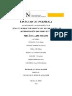MECSU PROCTOR 1.docx