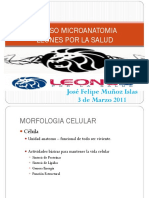 Repaso Histologia Leones por la Salud.pdf