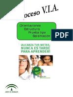proceso_VIA_ESPA[1].pdf