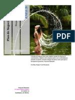 11240642_635069460211977272_Plan_de_Negocios_Proyecto_Diamante