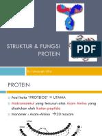 STRUKTUR DAN FUNGSI PROTEIN2012.pdf