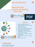 1er  Consejo Ejecutivo (3).pptx