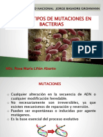 Mutaciones en bacterias