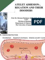 Platelet Adhesion, Aggregation Disorders