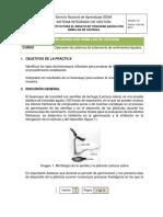 Bioensayo - lechuga (5)