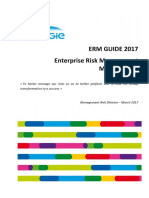 ERM Guide 2017