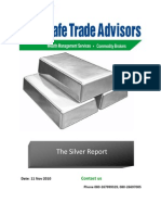 The Silver Report