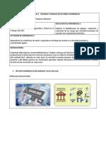 Formato Peligros Riesgos Sec Economicos (2)