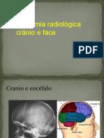 Anat Cranio