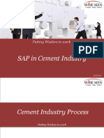230034909 Sap in Cement Industry