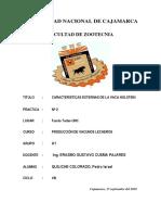 Informe 2 Caracteristicas Externas de La Vaca Holstein