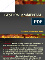 gestion ambiental 2.ppt