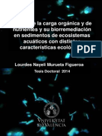 Tesis_Nayeli_Roderic.pdf