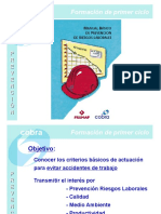 Manual de Prevencion de Riesgos Laborales Cobra.
