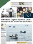 Extractores ilegales depredan última reserva natural de conchas de abanico