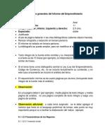 Lineamientos Generales Del Informe de El Emprendimiento