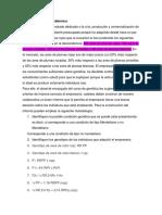 colaborativo_2