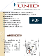 Apendicitis Expo