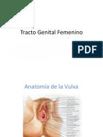 Tracto Genital Femenino