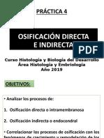 04_practico_osificación_2019