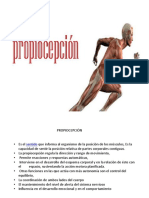 propiocepcion (2)