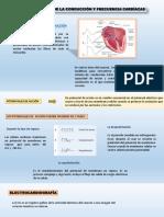 diapositivas expo.pptx