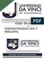 8. Guía de Derecho Procesal Civil y Mercantil