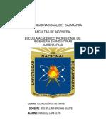 ELABORACIÓN DE MORTADELA.docx