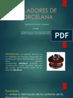 AILADORES DE PORCELANA.pptx