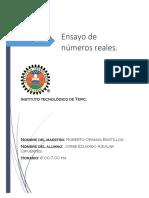 325394081-Ensayo-de-Numeros-Reales.pdf