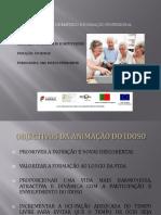 ufcd3541animaodeidososnodomicilioeeminstituies