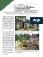 49852620-07025-coltivazione-mirtillo.pdf