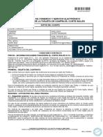 ctr_ComercioYServicioElectronico.pdf