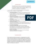 ANÁLISIS-PESTEC-Y-AMOFHIT.docx