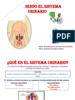Diapositivasdelsistemaurinario Jlo 2010 121107191240 Phpapp01