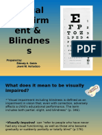 Visually Impaired With Blindness(modified)