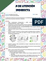 Plan de Atención Indirecta Jose Gilberto Fierro