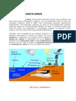 Www.educativ.ro Circuitul Carbonului in Natura