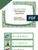 04-Language-Phonogram sentences by Trillium Montessori.pdf