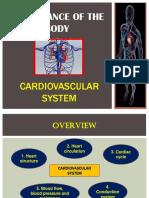 Chapter 2 Cardiovascular