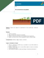 3°-El-crecimiento-de-una-planta