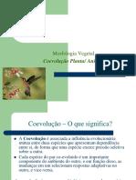 COEVOLUÇÃO PLANTA ANIMAL.pdf