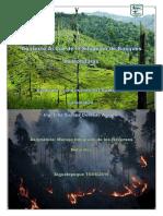 Contexto Actual de La Situacion de Bosques en Honduras L P