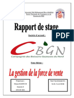 Rapport_de_stage_CBGN.docx