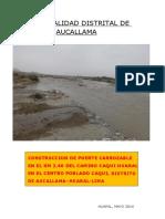 PERFIL - PUENTE CAQUI.pdf