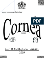 1-11 Cornea