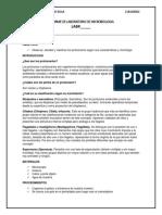 Informe de Laboratorio de Microbiologia